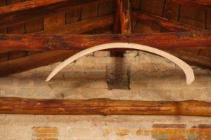 Chiesa di San Giorgio, costola di balena (reperto fossile risalente al Pliocene)